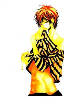 Читать мангу Honey Prince / Otoko no Ko wa Hachimitsu / Медовый принц онлайн