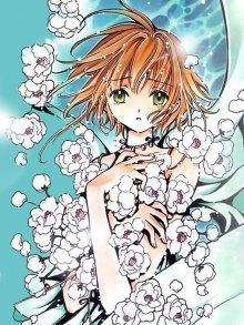 Читать мангу Tsubasa: Reservoir Chronicle / Хроника Крыльев онлайн