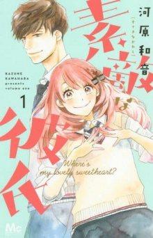 Постер к комиксу A Wonderful Boyfriend / Удивительный парень / Suteki na Kareshi